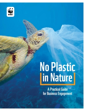No Plastic in Nature: A Practical Guide for Business Engagement